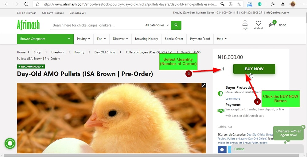 how to buy day old chicks on Afrimash