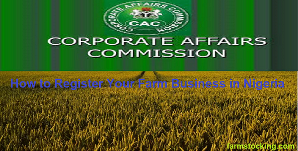 How to Register Your Farm Business in Nigeria – Step-by-Step Guide